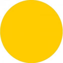 Filtro dicroico Yellow